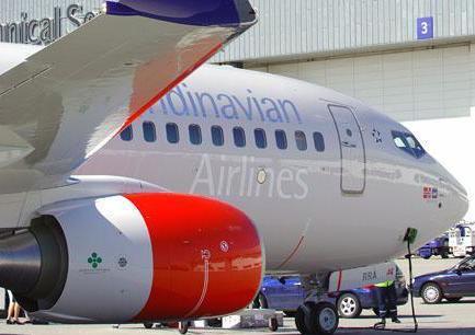 sas flyg bagage